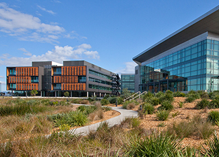 "<p style=""text-align: left;""><span style=""color: #006a4d;"">University of Wollongong Innovation Campus Development"